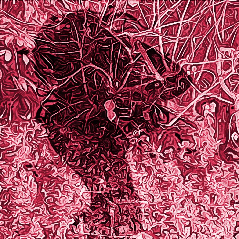 Notte d'Autunno, pittura digitale di Francesco Galgani, 29 novembre 2020