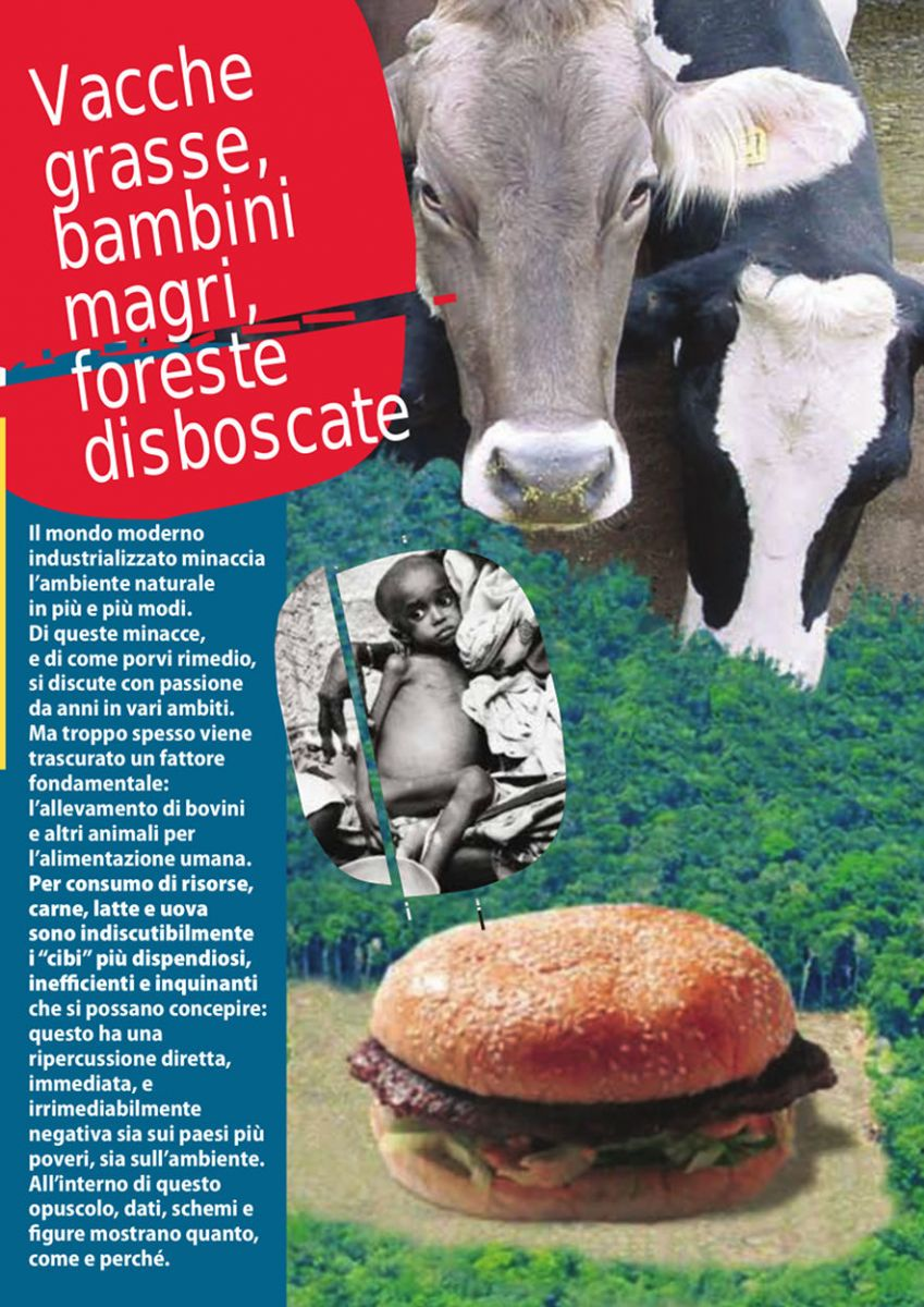 Vacche grasse, bambini magri, foreste disboscate